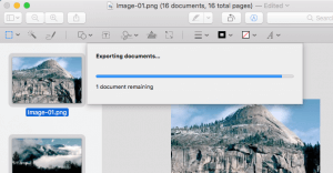 How to Resize Bulk Images at a Time in a Mac -3