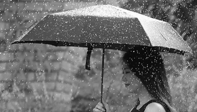 mi-umbrella