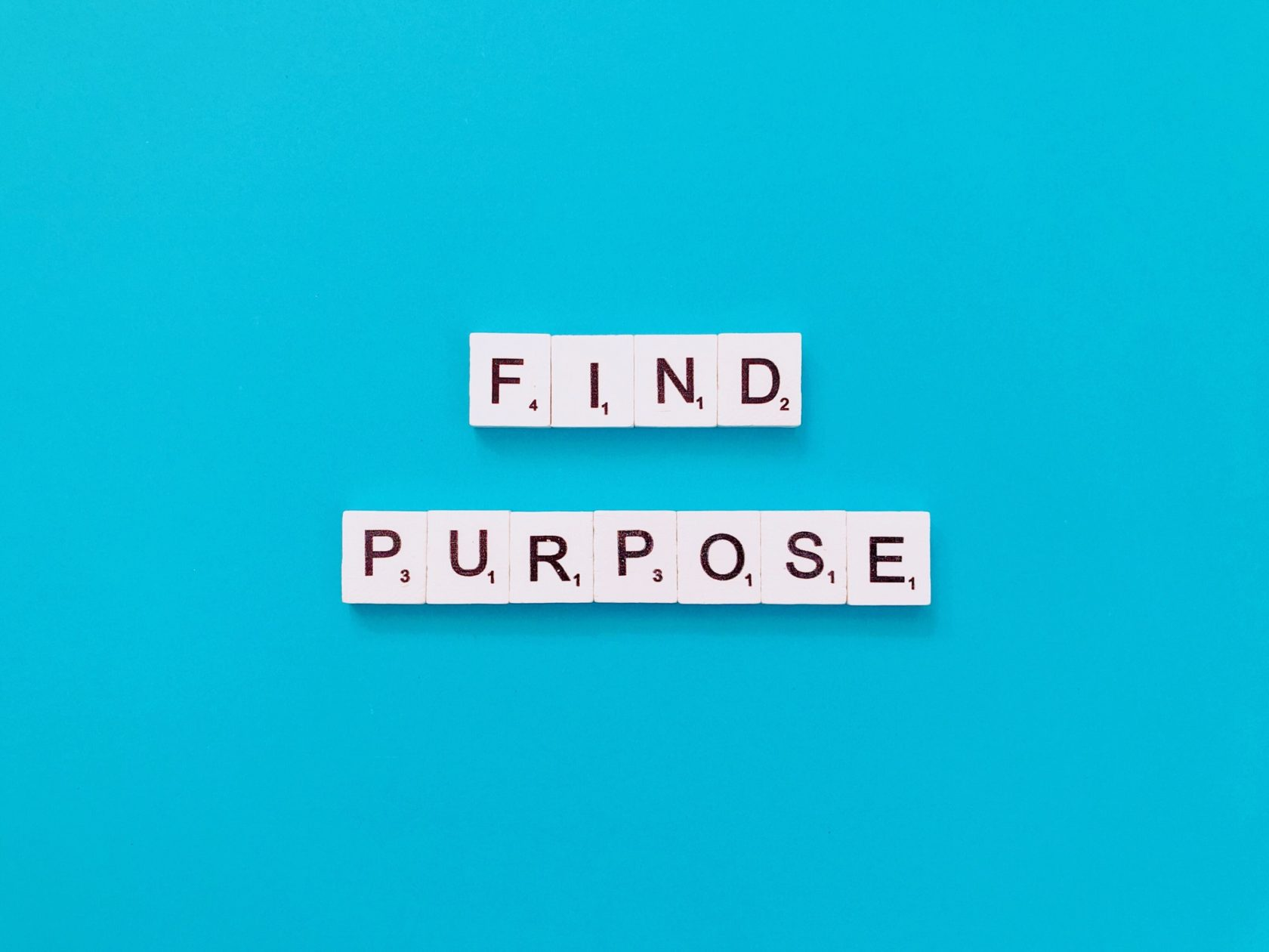 Find purpose.